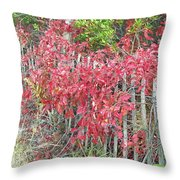 Virginia Creeper Vine On Dune Fence - Fall Colors Throw Pillow