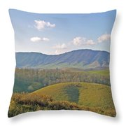 Virginia Mountains  Throw Pillow