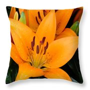 Virtue Throw Pillow by Heike Ward
