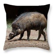 Visayan Warty Pig Throw Pillow