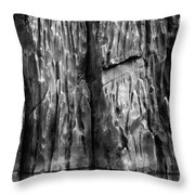 Vishnu Schist Throw Pillow