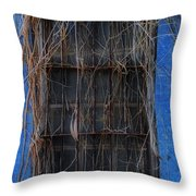 Vision Impaired Throw Pillow