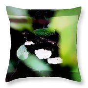 Vision Of Mushrooms Throw Pillow