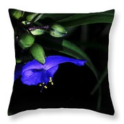 Vision Of Purple Throw Pillow