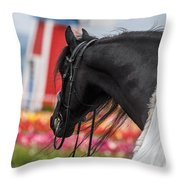 Visions Of Holland Throw Pillow