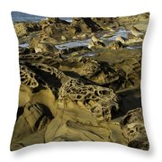 Visions Of Nature 4 Throw Pillow