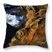 Visions Of Nature 5 Throw Pillow