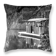 Visit To The Gator Hole Throw Pillow