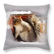 Visiting The Outhouse Throw Pillow