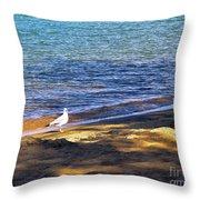 Visitor - Lake Tahoe Throw Pillow