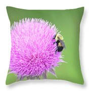 Visitor On Thistle Throw Pillow