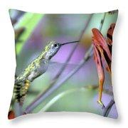 Vitality Of A Hummingbird Throw Pillow