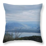 Vivary  Throw Pillow