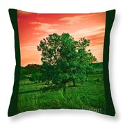 Vivid Blood Red Sky Throw Pillow
