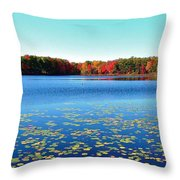Vivid Fall Colors Throw Pillow