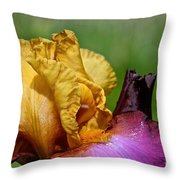 Vivid June Throw Pillow