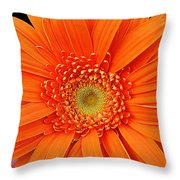 Vividacious Throw Pillow