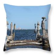 Vizcaya - The Pier Throw Pillow