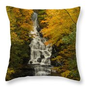 Vogal State Park Throw Pillow