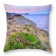 Volcanic Desert At Sunset Throw Pillow