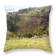 Volcano Farming Throw Pillow