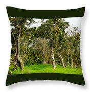 Volcano Ranch Throw Pillow