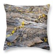 Volcano Regeneration Throw Pillow