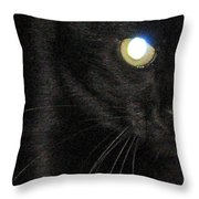 Voodoo On The Prowl Throw Pillow
