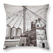 Voyces Mill Throw Pillow