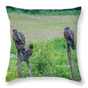 Vulture Fence Line 3 Throw Pillow