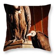 Vulture Male Throw Pillow