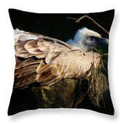 Vulture Resting In The Sun Throw Pillow