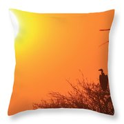 Vulture Sunset Silhouette Throw Pillow