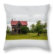 Vultures On A Farmhouse Throw Pillow