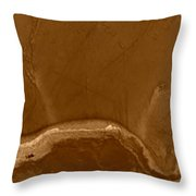 W Terra Throw Pillow
