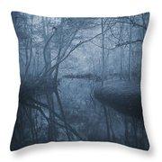 Waccasassa River Throw Pillow