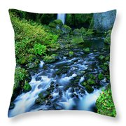 Wachlella Falls Columbia River Gorge National Scenic Area Oregon Throw Pillow