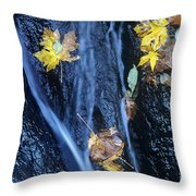 Wachlella Falls Detail Columbia River Gorge Throw Pillow