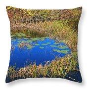 Wachusett Meadows 2 Throw Pillow