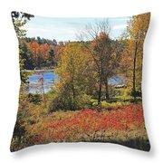 Wachusett Meadows 3 Throw Pillow
