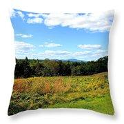 Wachusett Mountain From Tower Hill Throw Pillow
