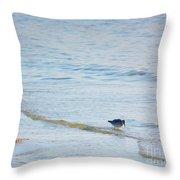 Waders Walking The Beach. Throw Pillow
