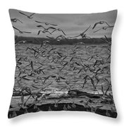Wading Birds-black And White Throw Pillow