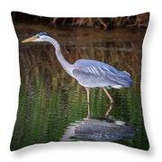 Wading Blue Heron Throw Pillow