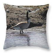 Wading Goose Throw Pillow