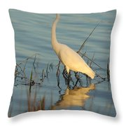 Wading The Pond Throw Pillow