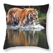 Wading Tiger Throw Pillow