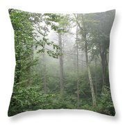Waft Of Mist - Shenandoah Park Throw Pillow