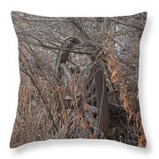 Wagon Wheel_7449 Throw Pillow