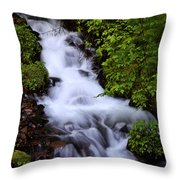Wahkeena Falls In Oregon Throw Pillow
